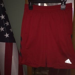 Men's Adidas gym shorts Red/gray stripes (Large)